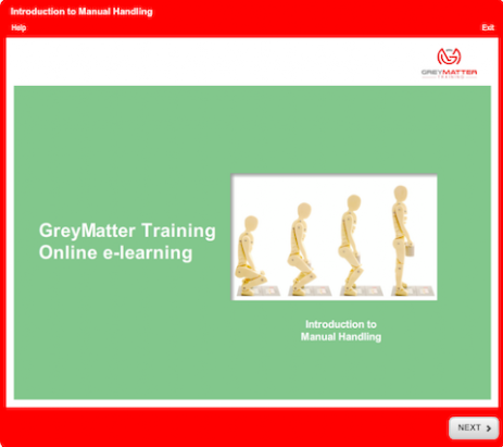 Manual handling course screenshot